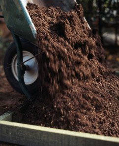 Add compost to the garden after the freeze.
