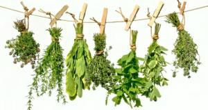 Hang small bundles of herbs on a line with clothes pins