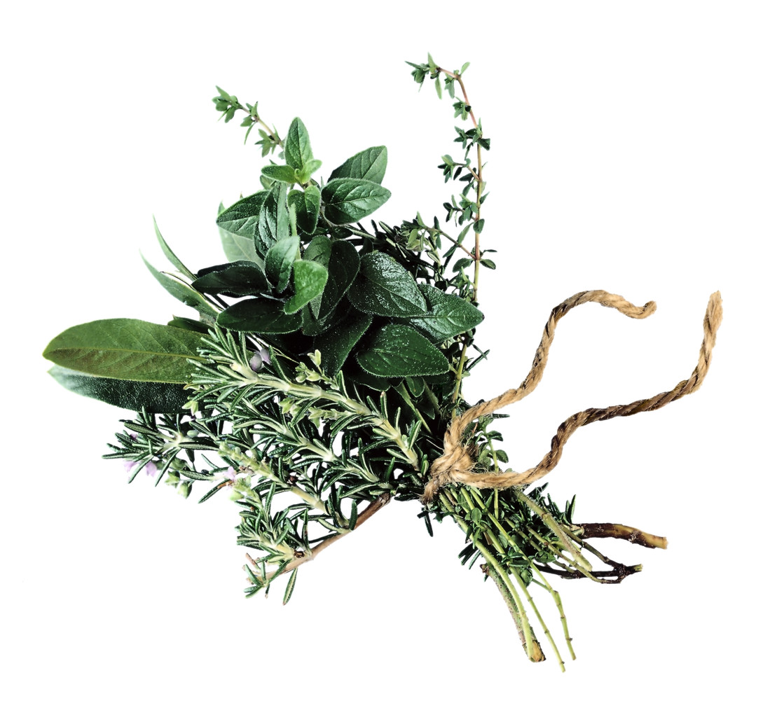 herb is the healing of the nation